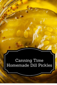 Canning Day At Our House–Homemade Dill Pickles