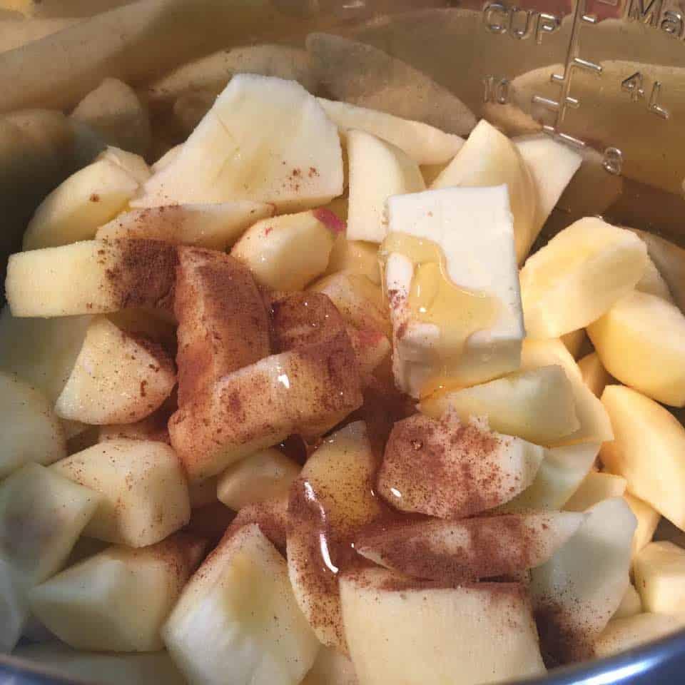 Apples Sauce 3