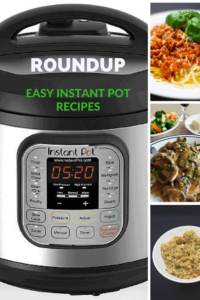 Round Up of Instant Pot Recipes