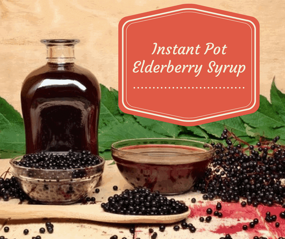 Pressure Cooker Instant Pot Elderberry Syrup