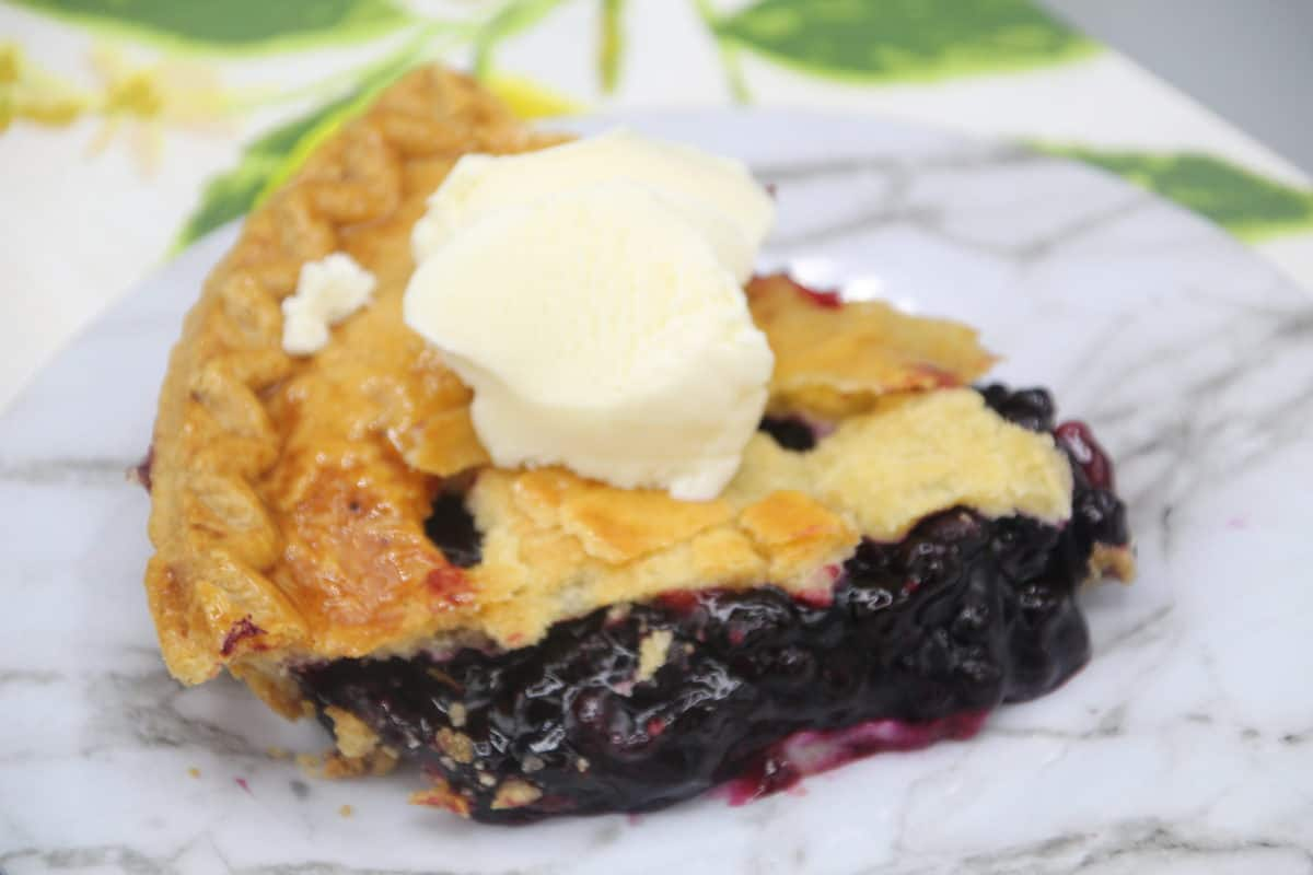 Blueberry Pie with ice cream on plate
