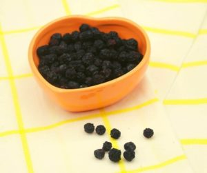 Air Fryer Dehydrated Blueberries