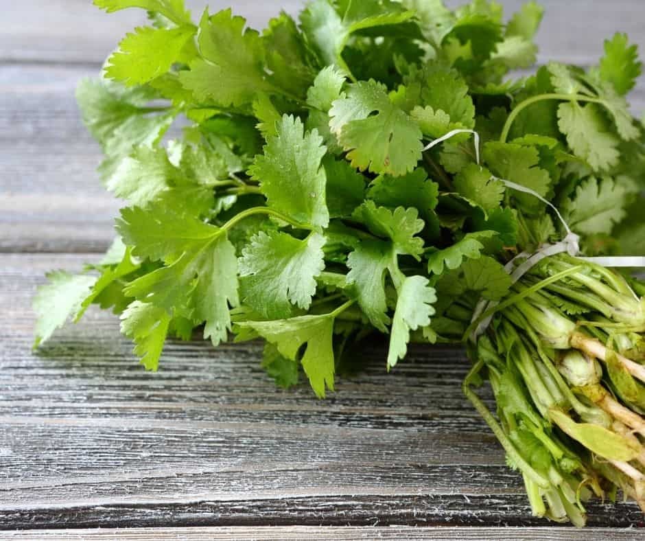 Ingredients Needed For Instant Pot Cilantro Lime White Rice