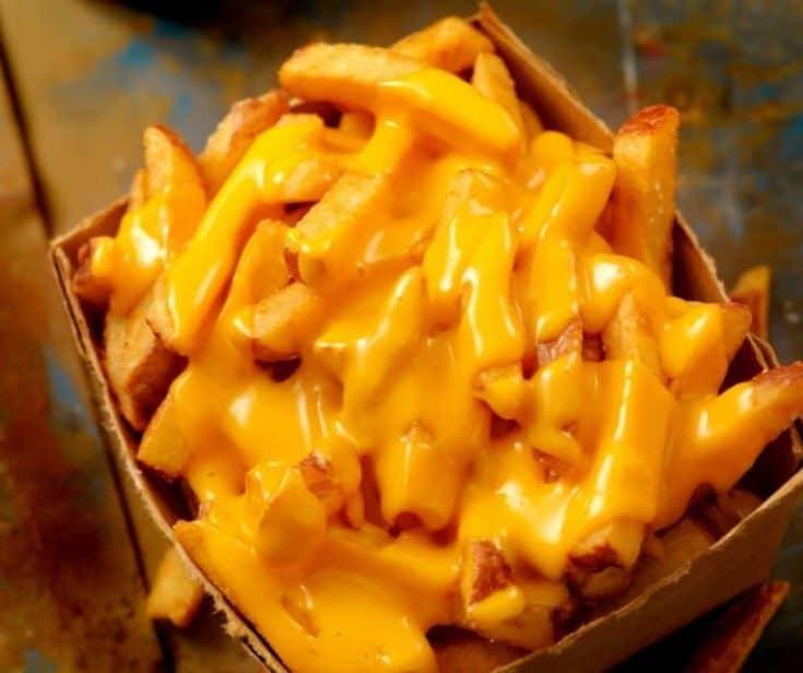 Air Fryer Cheese Fries