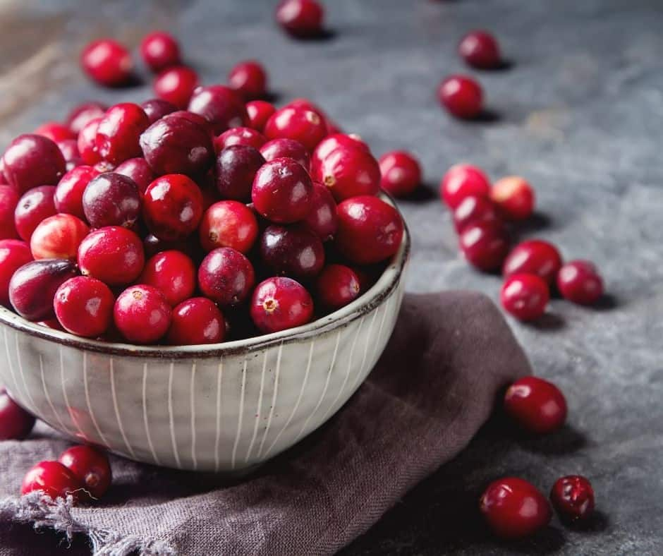 Ingredients Needed For Air Fryer Cranberry Muffin For One