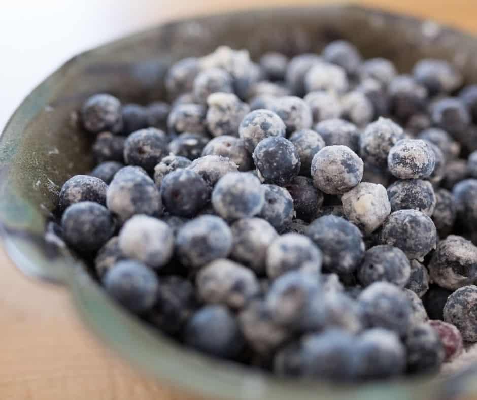 Blueberry Bottom in Bowl