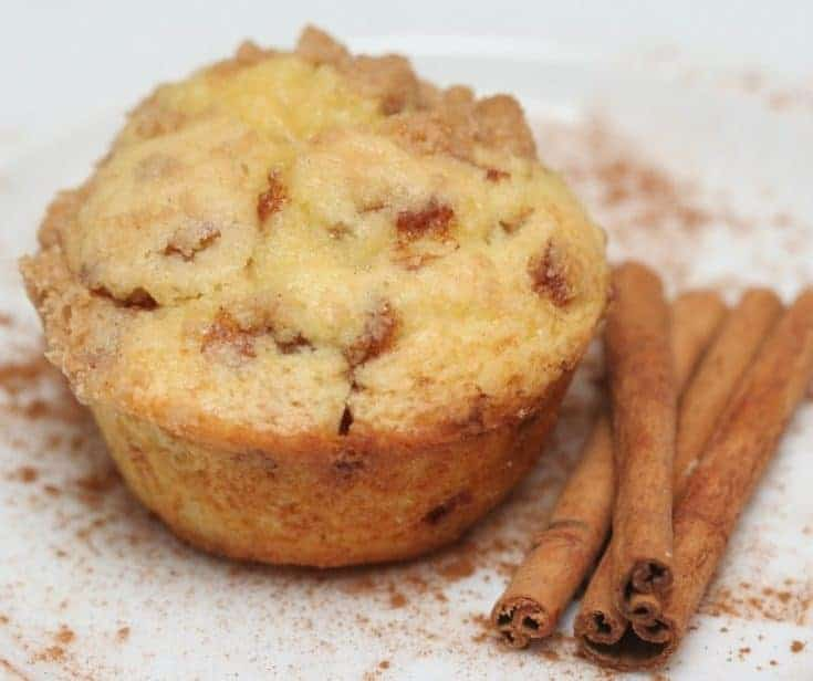 Air Fryer Snickerdoodle Muffins