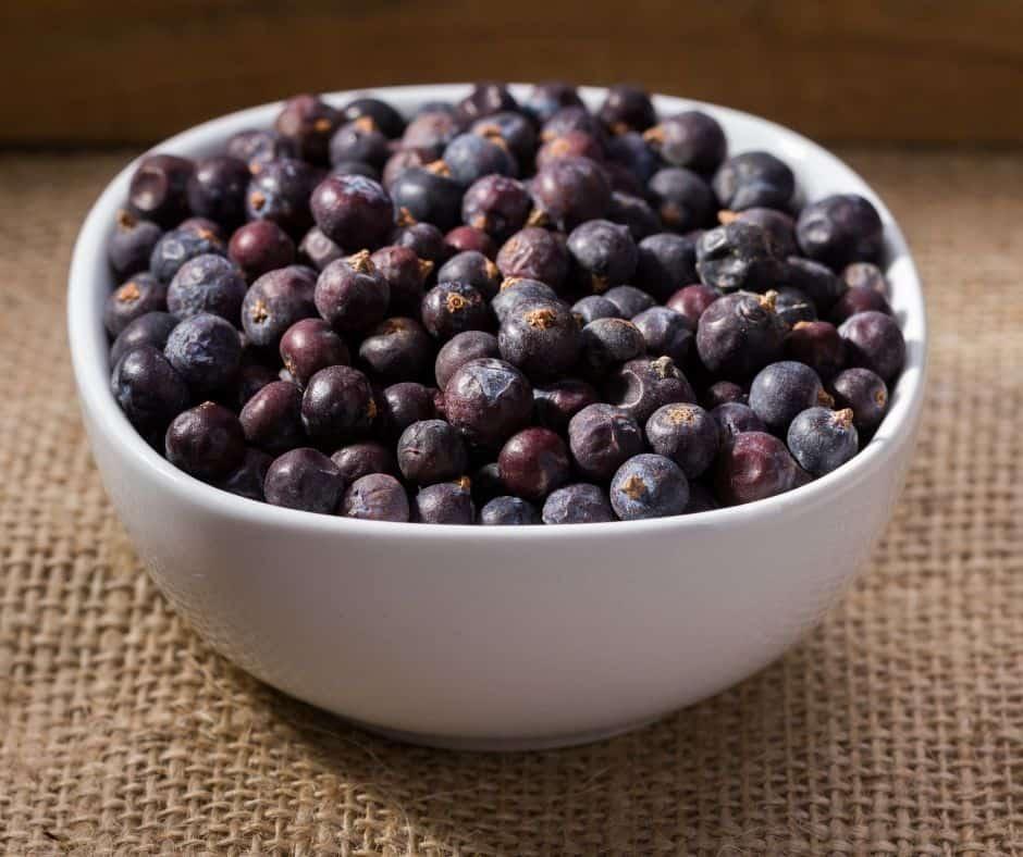 Ingredients Needed For Instant Pot Elderberry Syrup